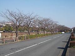 Dscn0849a