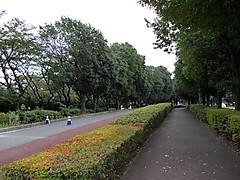 Dscn1493a