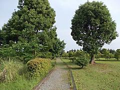 Dscn1820a