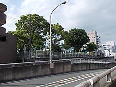 Dscn2202a