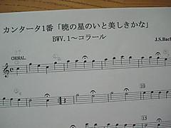 Dsc04006a